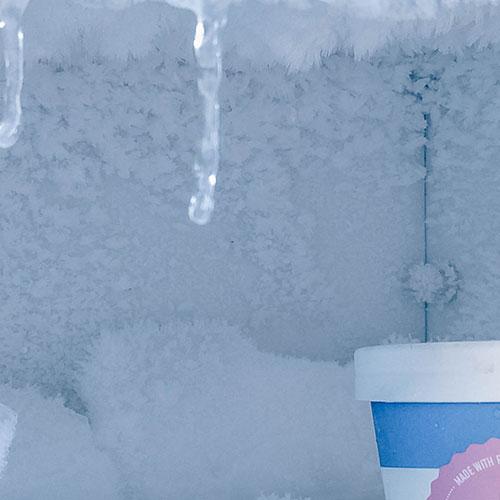 Frozen Goods Image